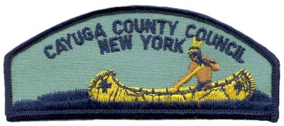Csp Cayuga County Council.jpg